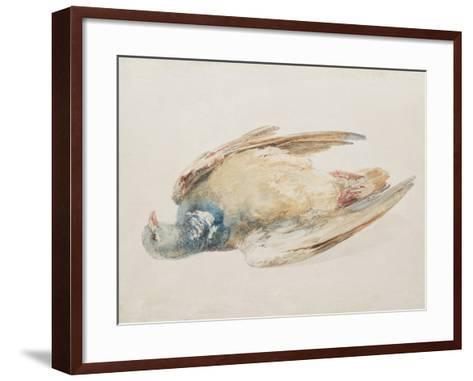 Pigeon, from the Farnley Book of Birds, C.1816-J^ M^ W^ Turner-Framed Art Print