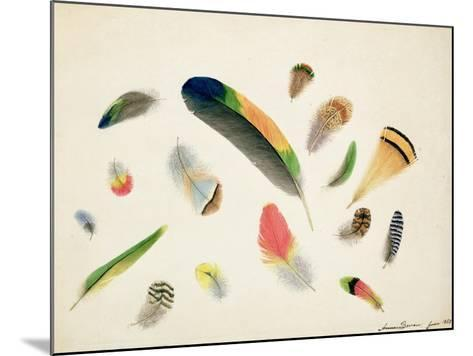 Studies of Feathers, 1855-Anne Bowen-Mounted Giclee Print