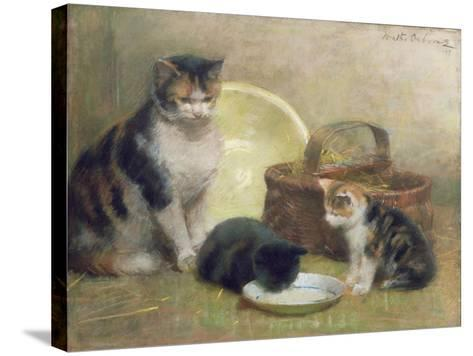 Cat and Kittens, 1889-Walter Frederick Osborne-Stretched Canvas Print