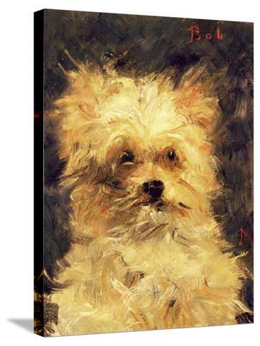 "Head of a Dog - ""Bob"", 1876-Edouard Manet-Stretched Canvas Print"