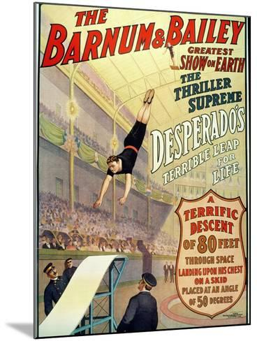 """Poster for Barnum and Bailey's Circus Showing Desperado's """"Terrible Leap for Life""""--Mounted Giclee Print"""