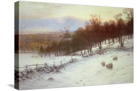 Snow Covered Fields with Sheep-Joseph Farquharson-Stretched Canvas Print