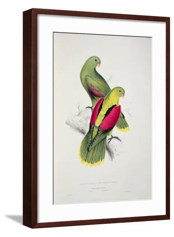 Crimson-Winged Parakeet-Edward Lear-Framed Art Print