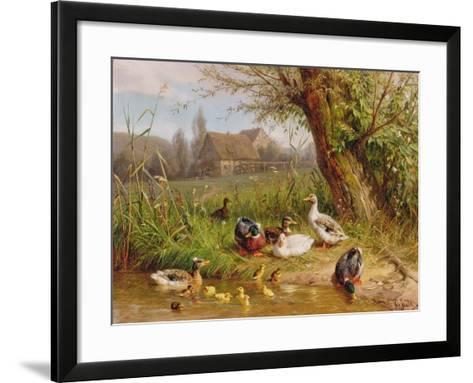 Mallard Ducks with their Ducklings-Carl Jutz-Framed Art Print