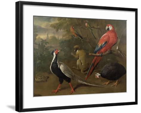 Pheasant, Macaw, Monkey, Parrots and Tortoise-Charles Collins-Framed Art Print