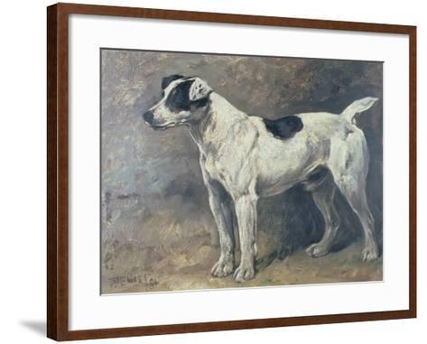 A Jack Russell, 1891-John Emms-Framed Art Print