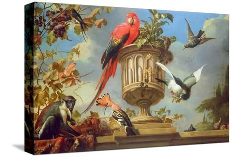 Scarlet Macaw Perched on an Urn, with Other Birds and a Monkey Eating Grapes-Melchior de Hondecoeter-Stretched Canvas Print