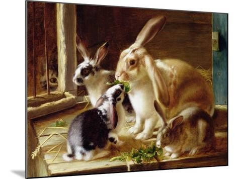 Long-Eared Rabbits in a Cage, Watched by a Cat-Horatio Henry Couldery-Mounted Giclee Print