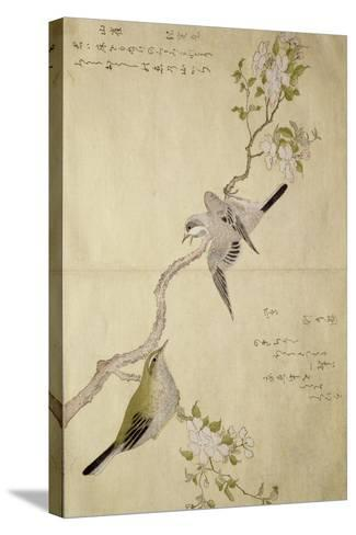 P.332-1946 Vol.1 F.2 Tit on a Bough on the Right and a Bush-Warbler on a Branch on the Left, from?-Kitagawa Utamaro-Stretched Canvas Print