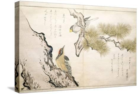 P.332-1946 Vol.1 F.3 Hawfinch and a Woodpecker, from an Album 'Birds Compared in Humorous Songs',…-Kitagawa Utamaro-Stretched Canvas Print