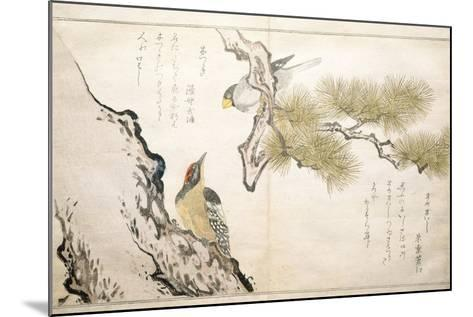 P.332-1946 Vol.1 F.3 Hawfinch and a Woodpecker, from an Album 'Birds Compared in Humorous Songs',…-Kitagawa Utamaro-Mounted Giclee Print