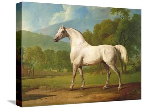 """Mambrino"", C.1790-George Stubbs-Stretched Canvas Print"