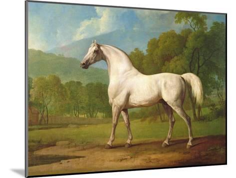 """Mambrino"", C.1790-George Stubbs-Mounted Giclee Print"