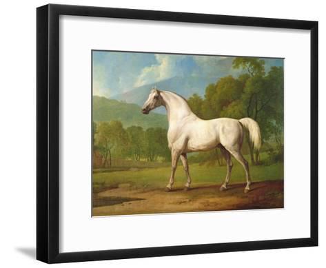 """Mambrino"", C.1790-George Stubbs-Framed Art Print"