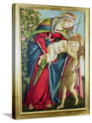 Madonna and Child with St. John the Baptist-Sandro Botticelli-Stretched Canvas Print