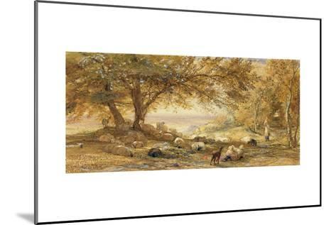 Shady Quiet-Samuel Palmer-Mounted Giclee Print