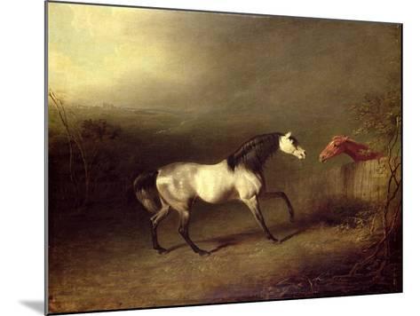 The Grey Arab-Sawrey Gilpin-Mounted Giclee Print