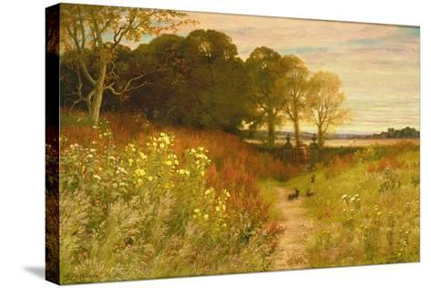 Landscape with Wild Flowers and Rabbits-Robert Collinson-Stretched Canvas Print