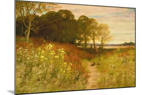 Landscape with Wild Flowers and Rabbits-Robert Collinson-Mounted Giclee Print