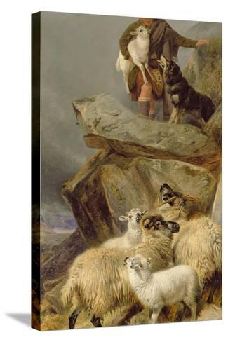 The Rescue, 1883-Richard Ansdell-Stretched Canvas Print