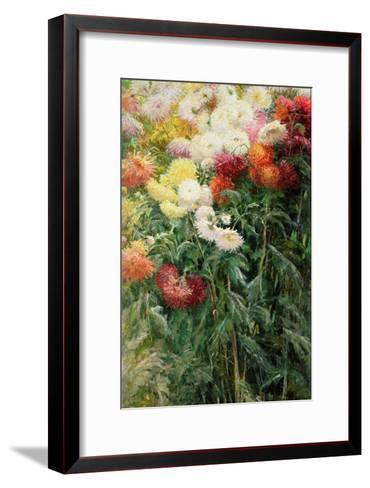 Clump of Chrysanthemums, Garden at Petit Gennevilliers, 1893-Gustave Caillebotte-Framed Art Print