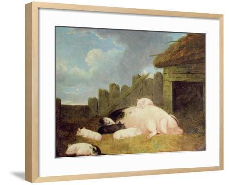 Sow with Piglets in the Sty-John Frederick Herring Jnr-Framed Art Print