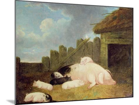 Sow with Piglets in the Sty-John Frederick Herring Jnr-Mounted Giclee Print