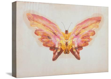 Butterfly-Albert Bierstadt-Stretched Canvas Print