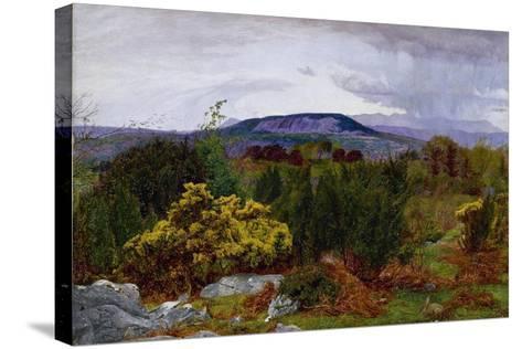 Spring, Arnside Knot from Warton Crag, C.1863-Daniel Alexander Williamson-Stretched Canvas Print