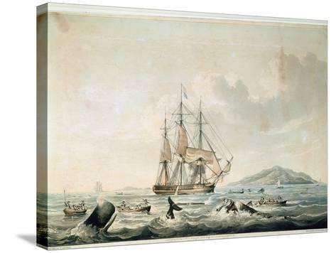South Sea Whale Fishery, Engraved by T. Sutherland, 1825-William John Huggins-Stretched Canvas Print