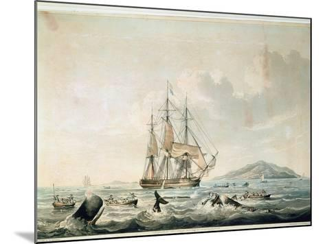 South Sea Whale Fishery, Engraved by T. Sutherland, 1825-William John Huggins-Mounted Giclee Print