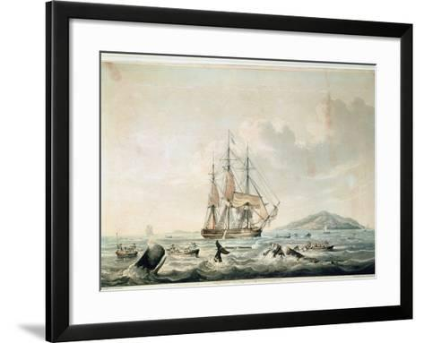 South Sea Whale Fishery, Engraved by T. Sutherland, 1825-William John Huggins-Framed Art Print