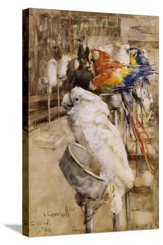The Aviary, Clifton, 1888-Joseph Crawhall-Stretched Canvas Print