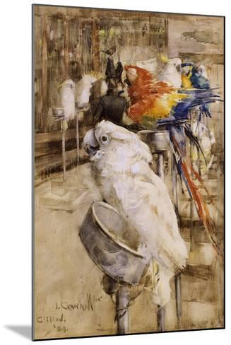 The Aviary, Clifton, 1888-Joseph Crawhall-Mounted Giclee Print