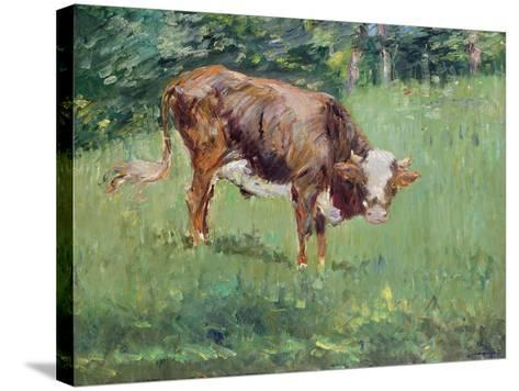 Young Bull in a Meadow, 1881-Edouard Manet-Stretched Canvas Print