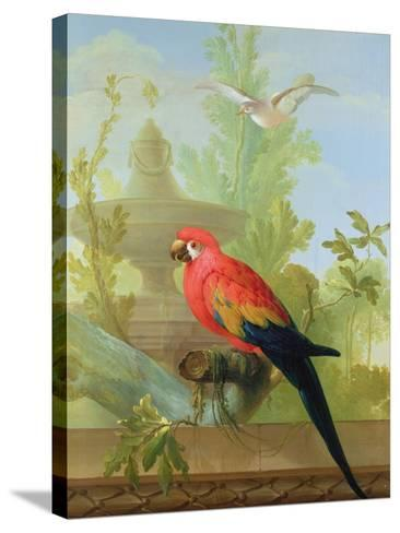 A Macaw and a Dove in an Ornamental Garden, 1772-Gerrit van den Heuvel-Stretched Canvas Print
