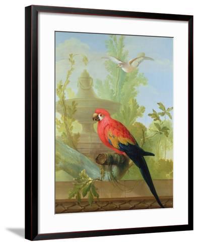 A Macaw and a Dove in an Ornamental Garden, 1772-Gerrit van den Heuvel-Framed Art Print