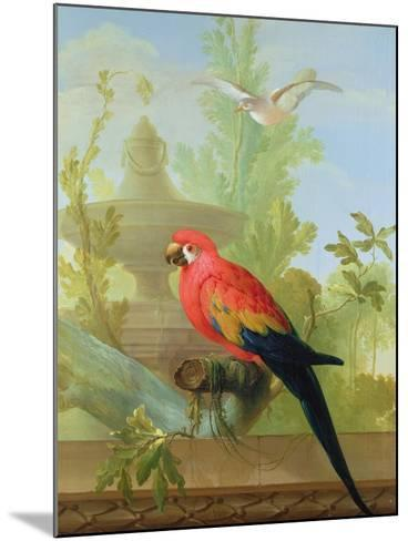 A Macaw and a Dove in an Ornamental Garden, 1772-Gerrit van den Heuvel-Mounted Giclee Print