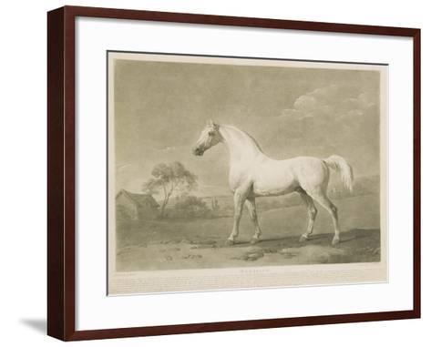 Mambrino, after George Stubbs, 1788-Charles Howard Hodges-Framed Art Print