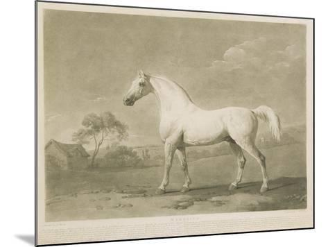 Mambrino, after George Stubbs, 1788-Charles Howard Hodges-Mounted Giclee Print