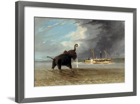 The 'Ma Roberts' and an Elephant in the Shallows, Lower Zambezi, 1859-Thomas Baines-Framed Art Print