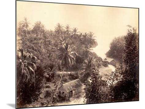 Priestman's River, Jamaica, 1891-J. Johnson-Mounted Photographic Print