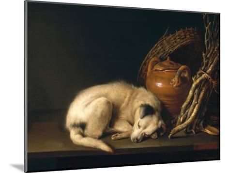 A Sleeping Dog with Terracotta Pot, 1650-Gerrit or Gerard Dou-Mounted Giclee Print