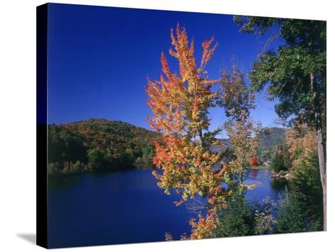 View in the Appalachian Mountains--Stretched Canvas Print