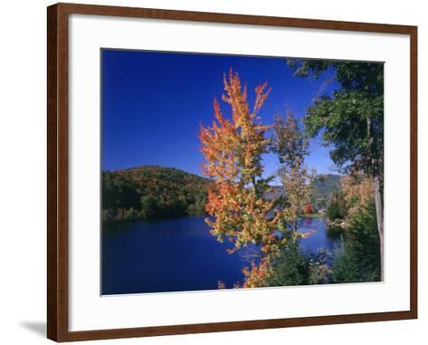 View in the Appalachian Mountains--Framed Art Print