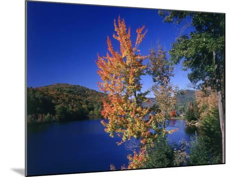 View in the Appalachian Mountains--Mounted Photographic Print