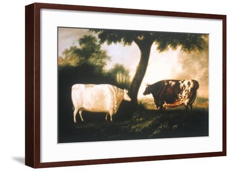 Two Shorthorn Cattle, 1806-Thomas Harrington Wilson-Framed Art Print