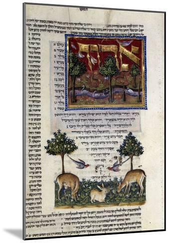 Fol.80 from 'The Rothschild Miscellany', Northern Italy, C.1450-80--Mounted Giclee Print