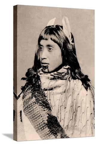 Maori Girl with Moko Chin--Stretched Canvas Print