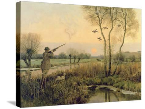 Duck Shooting-Christopher William Strange-Stretched Canvas Print